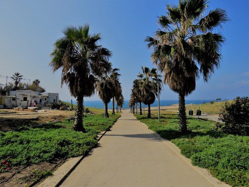 דירות למכירה ביפו מול הים